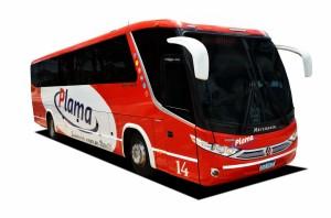 Plama Coche 14